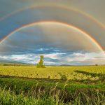 הקרבה לקדוש ברוך הוא, היא החיים - פרשת ניצבים