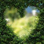וידעת היום והשבות אל לבבך - פרשת ואתחנן