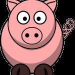 למה החזיר נחשב לחיה הטמאה ביותר? פרשת שמיני